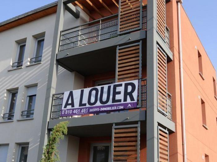 Honoraires de location les agences immobilieres dans l for Locations agences immobilieres