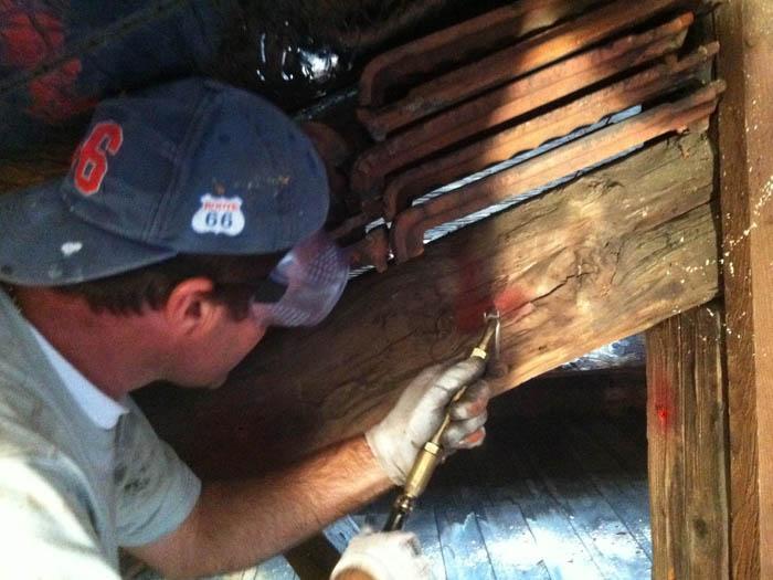 La chasse aux xylophages est ouverte solutions construction bois - Comment se debarrasser des insectes ...