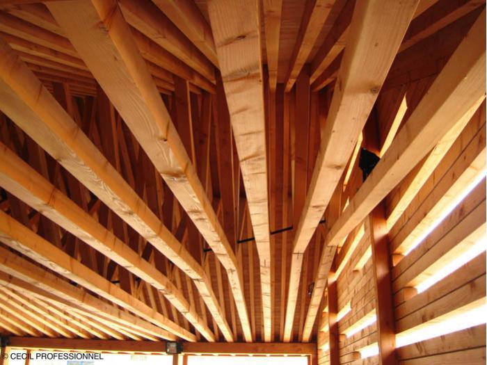 traitement des bois de construction et d 39 am nagement march. Black Bedroom Furniture Sets. Home Design Ideas