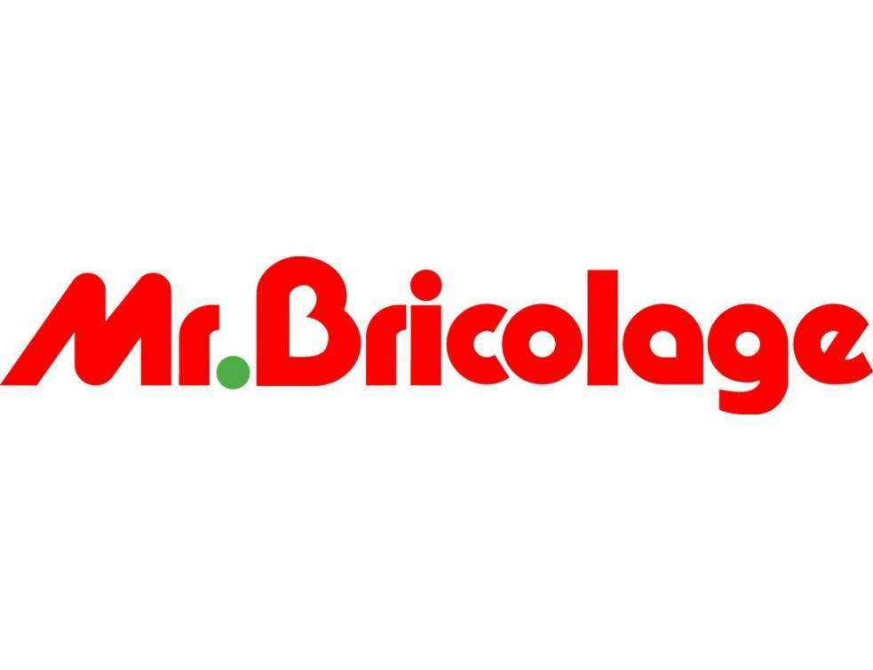Mr Bricolage Voit Ses Ventes Chuter De 10 Au Premier Semestre